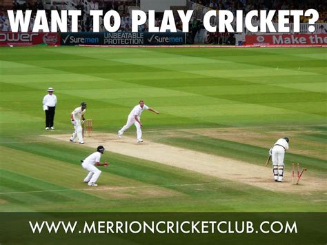 cricket to play want to play cricket by kade beasley