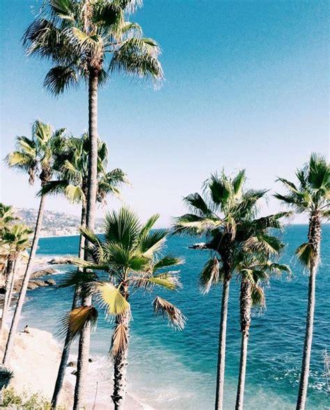 pinterest wallpaper beach pinterest javi kassens summer pinterest palm