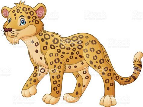 imagenes animadas de un jaguar leopardo de dibujos animados caminar arte vectorial de