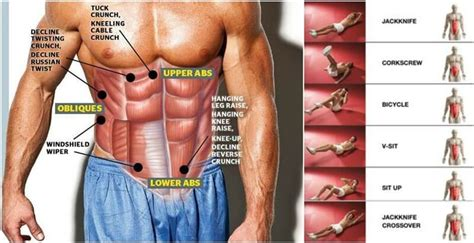 2 minutes ab workout for stronger abs fitness house