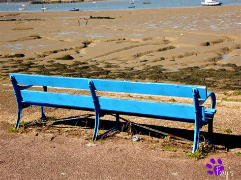 the blue bench the blue bench 001 20 04 13 by lacedshadowdiamond on