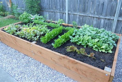 Gardeners Planters by How To Build A Raised Planter Bed For 50 For Your Next Garden Project Diy
