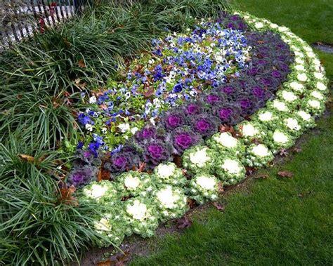 how to plant a flower garden ukrasni kupus