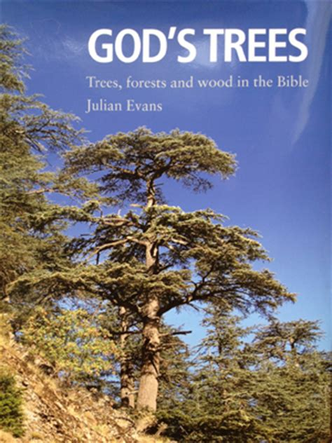 tree in bible god s trees julian evans new book about trees forests