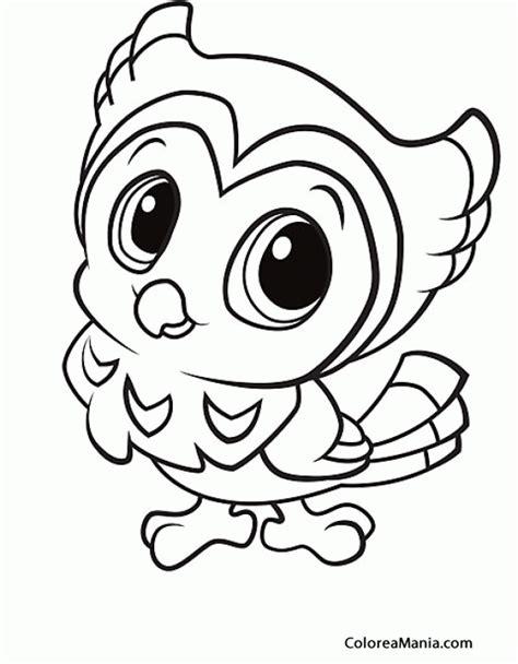 imagenes para pintar buhos colorear bho infantil aves dibujo para colorear gratis
