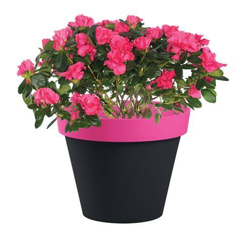 pot de fleur plastique 3983 pot de fleur style bicolore 216 40x32cm rond 23l