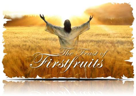 7 fruits of god 914 best images about ressurection sonday on