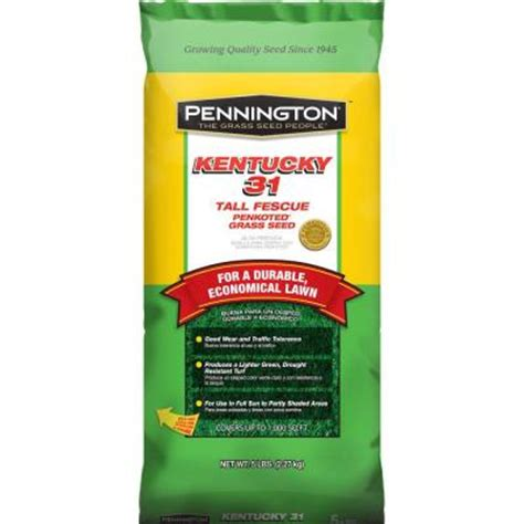 kentucky 31 5 lb fescue penkoted grass seed