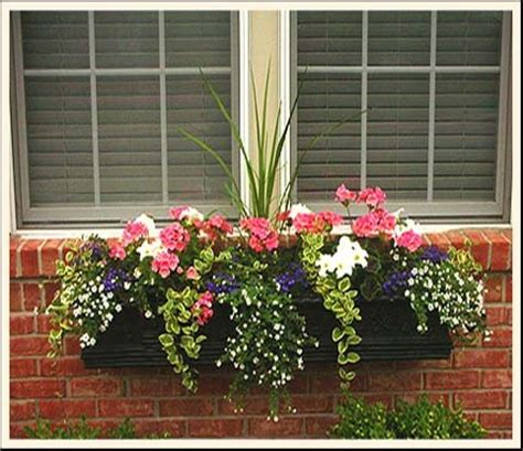 window box flower designs window box flowers askmax countrymax