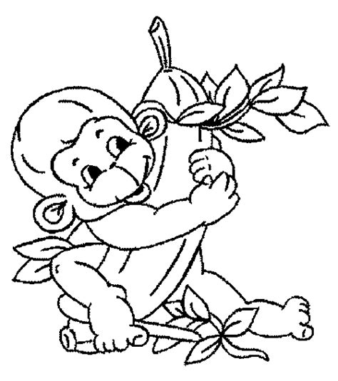 what color are monkeys monkey coloring pages