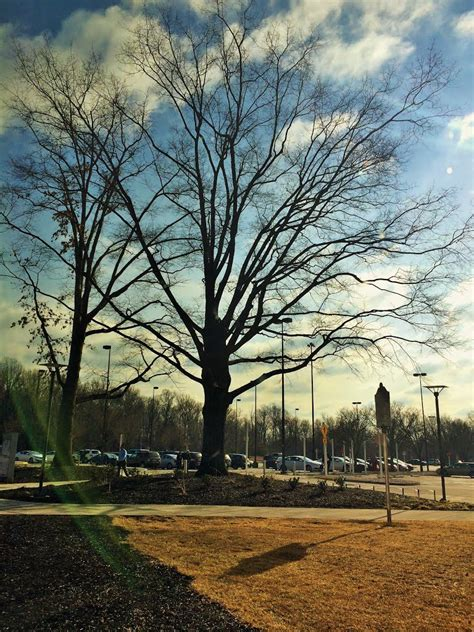 maryland house rest area panoramio photo of maryland house rest area fevereiro de 2015