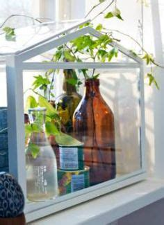 socker greenhouse 1000 images about ikea socker on pinterest greenhouses