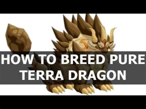 how does a to be to breed how to breed terra in city on
