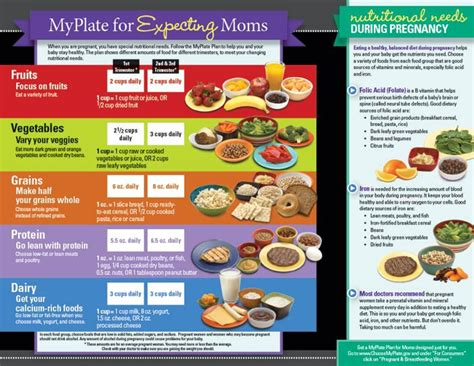 Free Giveaways For Expecting Moms - myplate for expecting moms tri fold brochures