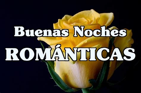 imagenes buenas noches romanticas buenas noches frases www imgkid com the image kid has it