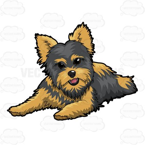 how to clip a yorkie happy resting on floor vector clip
