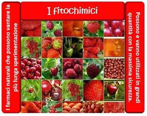 articoli sull alimentazione i fitochimici