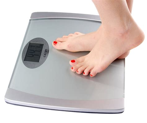 image of a scale digital weighing scale png image pngpix