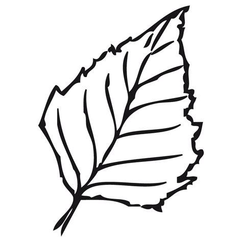 dibujos en hoja semilogaritmica hoja de abedul dibujalia dibujos para colorear