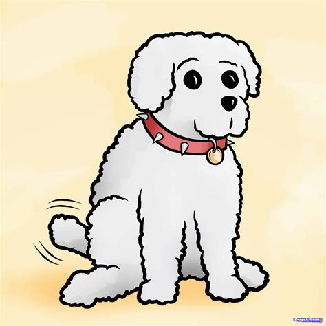 how to a poodle how to draw a miniature poodle step by step pets animals free drawing