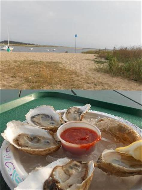 best oysters in cape cod wellfleet ma the best cape cod vacation town