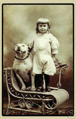 nanny dogs is elizabeth warren a pit bull ethics alarms