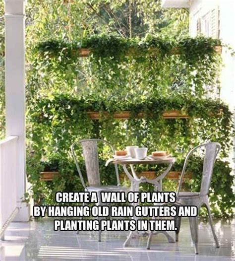 Screen Wall Vertikultur 25 best ideas about plant wall on wall