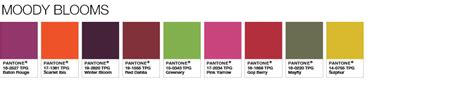 pantone color pallete color of the year 2017 pantone color of the year 2017