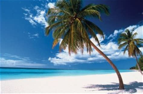 Couple Getaways by Excursion Saona Island For Only 70 Usd Lpc Tours