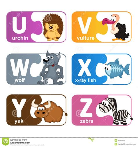 stickers alphabet animals from u to z stock vector