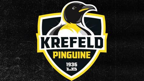krefeld pinguine haben ein neues logo kicker
