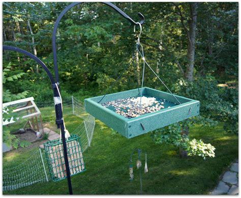 platform dove feeder