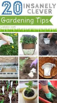 garden tips 20 insanely clever gardening tips and ideas flowers
