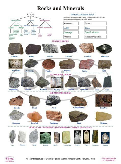dbios rocks and minerals digitally printed wall poster