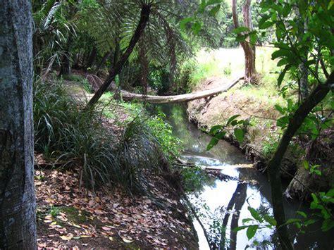 Manurewa Botanical Gardens Auckland Botanic Gardens Manukau Island New Zealand 054