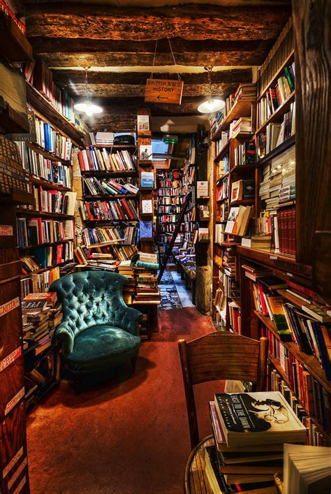Amazing Spaces Treehouse - the 20 most beautiful bookstores in the world flavorwire