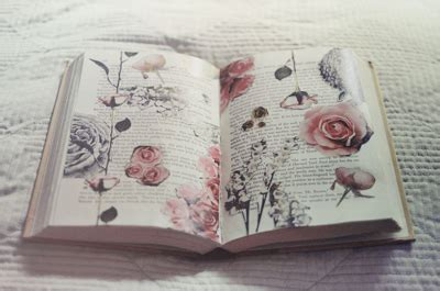 libro naturalists notebook the high on hope via image 915720 by mollyroop on favim com