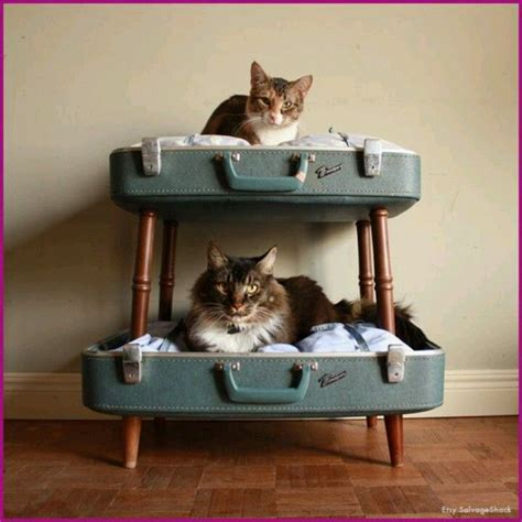 Oude Koffer Pimpen by 10 Cutest Cat Houses You Can Make Yourself All About Cats
