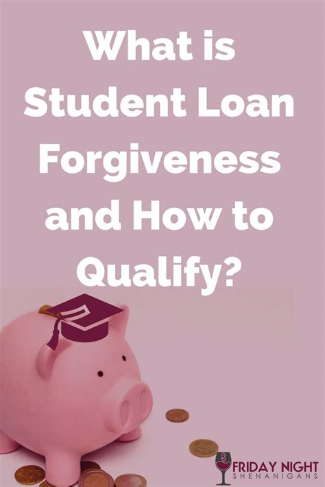 student loan programs 1000 ideas about student loan debt on student