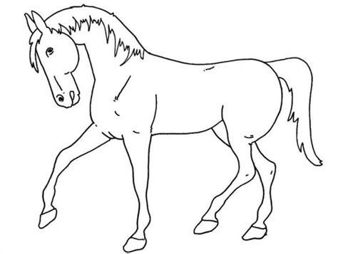 Ensiklopedi Hewan Hewan Purba gambar sketsa mewarnai gambar hewan dunia putra putri