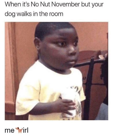 No Nut November Memes - when it s no nut november but your dog walks in the roonm irl meme on me me