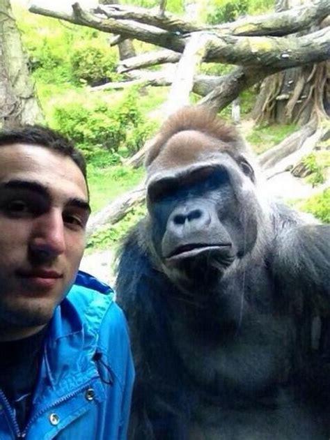 funniest selfies funcage