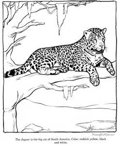 free zoo animal coloring pages free zoo animal coloring pages coloring home