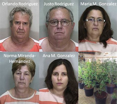 Ocala Department Warrant Search Ocala Post Five Busted For Marijuana Grow Houses In Ocala