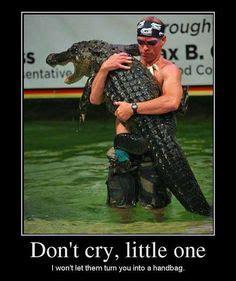 Gator Meme - crocks and gators on pinterest alligators crocodiles