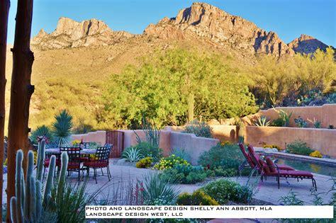 designing sustainable colorful desert landscapes