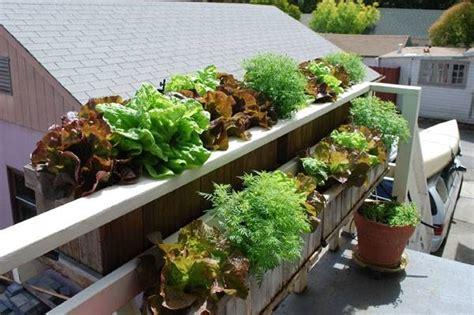 fioriere per balconi fioriere da balcone fioriere