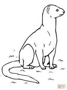 yellow mongoose coloring page free printable coloring pages