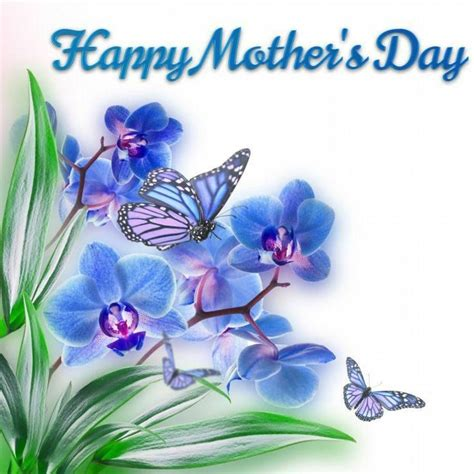 Blue Floral Butterfly Happy Mother's Day Image Pictures