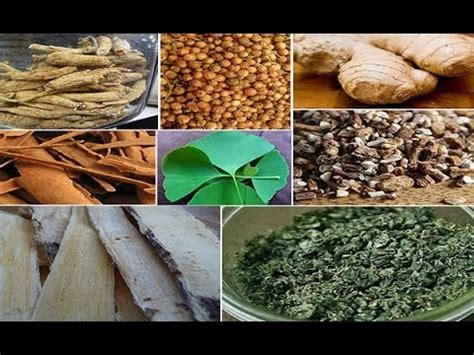 Stimulants Herbs That Give best herbs for energy using herbal stimulants
